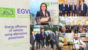 EGVI 10th Anniversary Party